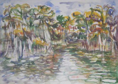 Big Cypress Bayou